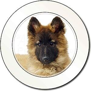 Perro pastor belga Impuesto de matriculación disco regalo permisionario