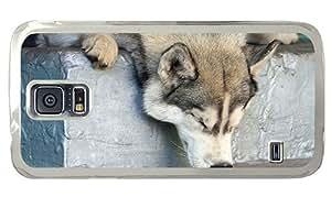 Hipster amazing Samsung Galaxy S5 Case sleepy husky PC Transparent for Samsung S5
