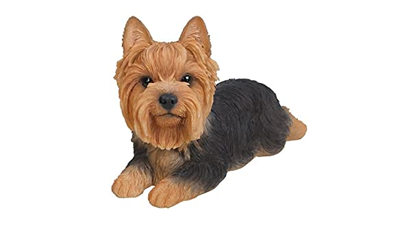 Amazon.com : Vivid Arts Pet Pals Yorkshire Terrier LAYING Puppy Ornament by : Garden & Outdoor