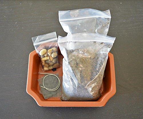 9GreenBox - Bonsai Potting Kit