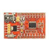 UXOXAS MaiTech STM8S 20 Pin Development Board/Minimal Core Board