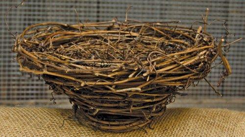 Primitive Grapevine (Natural Dried Grapevine Twig Birdnest Angelvine Lined Country Primitive Floral)