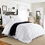 downluxe White Down Comforter Queen - All Seasons Down Duvet Inserts, 350TC 600 Fill Power 100% Cotton Shell Down Proof with Tabs,Down Duvet Inserts or Stand-Alone Bed Comforter