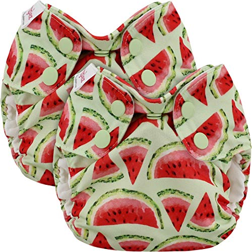 Blueberry Newborn Simplex All in One Cloth Diapers, Bundle of 2, Made in USA (Watermelon)
