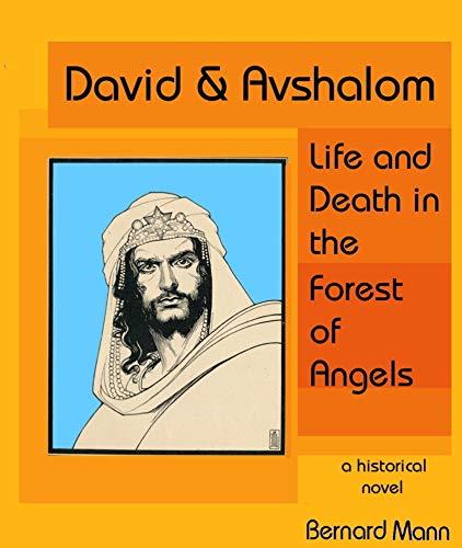David & Avshalom by Bernard Mann ebook deal