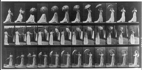 (Infinite Photographs Photo: Animal locomotion. Plate 461,Woman opening an umbrella,c1887,Eadweard Muybridge)