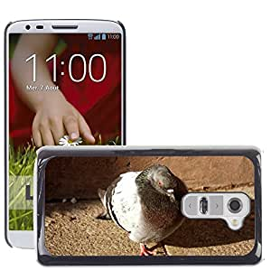 Hot Style Cell Phone PC Hard Case Cover // M00310482 Bird Pigeon Nature Animal // LG G2 D800 D802 D802TA D803 VS980 LS980