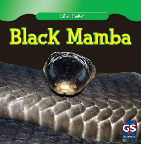 Mamba Series (Black Mamba (Killer Snakes))
