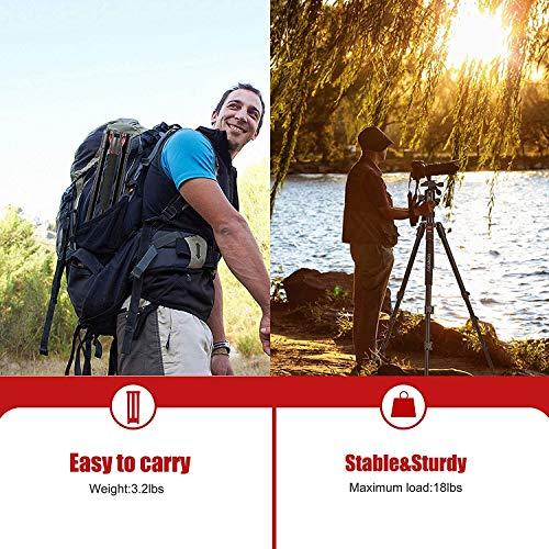 BONFOTO B168 Kamera Stativ Einbeinstativ, 178cm Kompakt Aluminiumlegierung Reisestativ mit Handy Halterung, Kugelkopf und Stativtasche