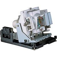 Original Manufacturer BenQ LCD Projector Lamp:5J.J2N05.011