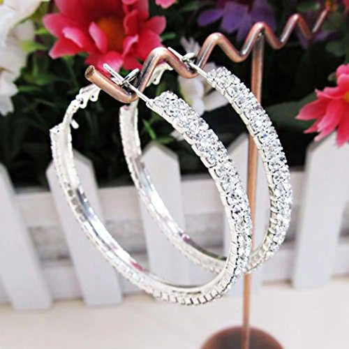 Big Round Earrings,Women Ear Hoops Dangles Wedding Earrings Ear Studs Jewelry Hemlock (Silver1)