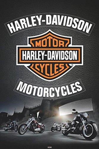Harley Davidson - Leather