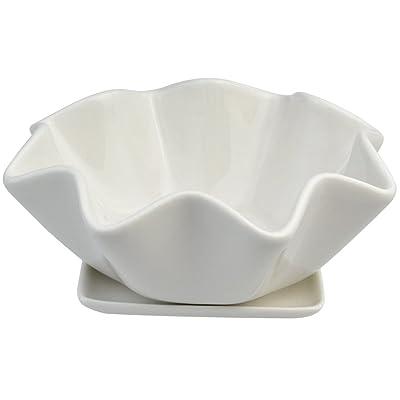 cnomg Ceramic Succulents Planter, Succulents Pots Bowl with Saucer Decorative Plant Pot with Drainage 6 INCH: Garden & Outdoor
