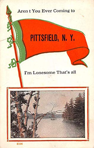 Pittsfield New York Greetings Pennant Flag Vintage Postcard J927860