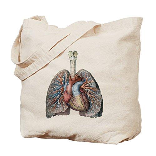 CafePress–Human anatomía corazón y pulmones–Gamuza de bolsa de lona bolsa, bolsa de la compra