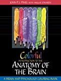 img - for A Colorful Introduction to the Anatomy of the Human Brain: A Brain and Psychology Coloring Book book / textbook / text book