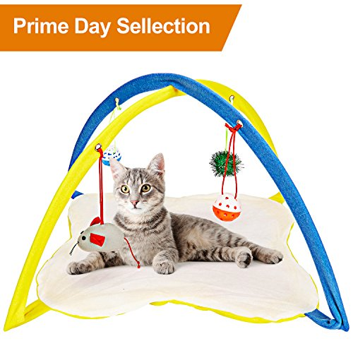 Animals Favorite Cat Play Mat, Cat Tent Activity Center with Hanging (Cat Play Center)