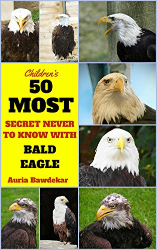 Bald Eagle : 50 Most Secret Never To Know With Bald Eagle (Bald Eagle,
