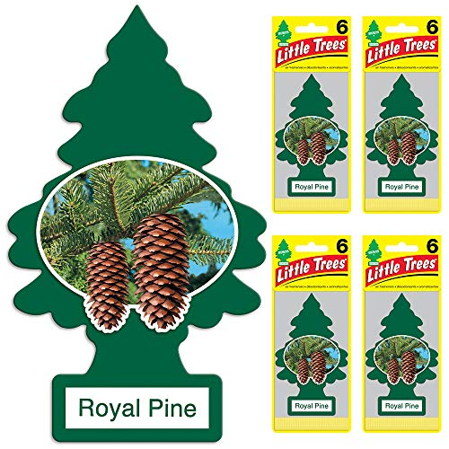 LITTLE TREES auto air freshener, Royal Pine, 6-packs (4 count)