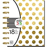 me & my BIG ideas Create 365 The Happy Planner, Gold Foil Dots, 18 Month Planner, July 2015 - December 2016