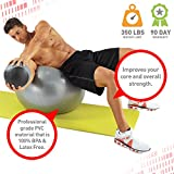 Pure Fitness 75cm Professional Exercise Stability