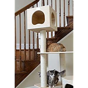 Armarkat Premium Pinus Sylvestris Wood Cat Tree Condo Scratching Post Kitty Furniture Tall Sturdy Light Wood and Sisal Rope