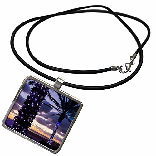 3dRose Danita Delimont - Trees - USA, Florida, Fort Lauderdale Beach, Palm Trees at Dawn - Necklace with Rectangle Pendant (ncl_205266_1)