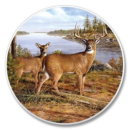 Buck And Doe Auto Coaster