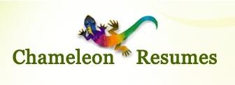 Amazon Com The Do It Yourself Branded Resume Kit Ebook Lisa Rangel
