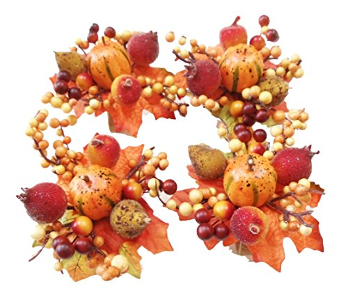 Turkey Napkin Rings - Pumpkin Harvest Bouquet Napkin Rings Set