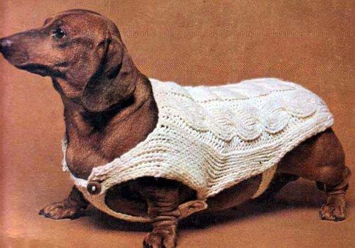 Cable Stitch Dachshund Dog Sweater Blanket Coat Knitting Pattern