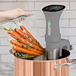 Gramercy Kitchen Co Sous Vide Immersion Circulator Cooker