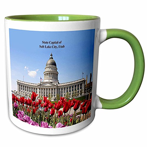 3dRose Sandy Mertens Utah - State Capital of Salt Lake City, Utah - 11oz Two-Tone Green Mug - Salt Utah Lake Outlets City