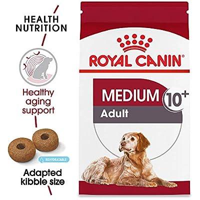 Royal Canin Size Health Nutrition Medium Aging 10+ Dry Dog Food
