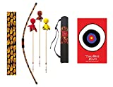 Two Bros Bows Flame Archery Combo Set