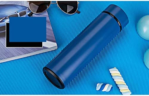 Stainless Steel Travel Mug Tea Infuser Bottle Double Wall Infused Water Flask Blue
