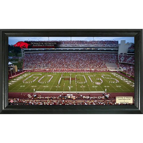 Arkansas Stadium Gridiron Photo Stadium Ncaa Photo Mint