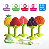soft fruit toys - Baby Teething Toys BPA Free Soft Silicone Gupamiga Baby Fruit Teethers Toys with Pacifier Clip/ Holder Non-Toxic, Soft, Durable and Freezer Safe For Boys & Girls Infant and Toddler(5 pack)