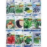 Portal Cool Bird Chilli 90 Seeds: Semillas de hortalizas orgáNicas, orgáNicas, Verdes y Naturales al por Mayor Chiatai Thai