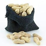 Great Companions In Shell Peanuts Bird Treat 5 lbs