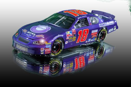 Bobby Labonte #18 Purple Advair Interstate Batteries 2003 Monte Carlo 1:24 scale Action Limited Edition 7,068