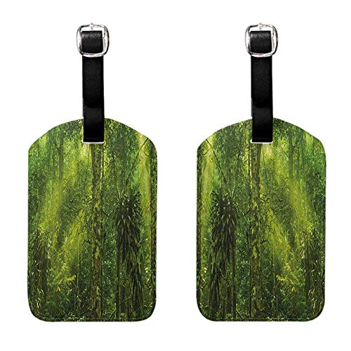 Luggage Tags Holders Plant,Tropical Tranquil Place with lots of Green Trees Earthly Places Untouched Jungle,Apple Green Luggage Tags - 2 Pack