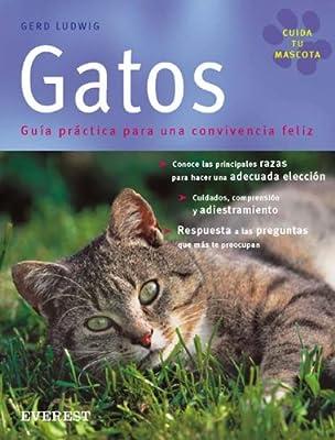 Gatos: Guía práctica para una convivencia feliz Cuida tu mascota ...