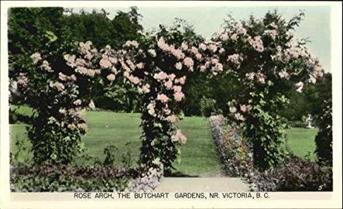 Rose Arch, The Butchart Gardens NR. Victoria, British Columbia Canada Original Vintage - Victoria Gardens Com