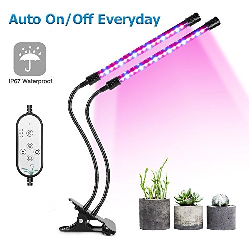 Newest Led Grow Lights in Florida - 7