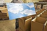 Cumulus I Skypanels - Replacement Fluorescent Light