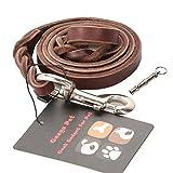 Dog Leather Leash,Geega Pet Heavy Duty Braided Dog Training Leash,Strong, Durable Dog Slip Lead with Dog training whistle(iron hook, 4-Feet x 1/2-Inch)