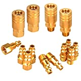 PowRyte 14-Piece 1/4-Inch Industrial Solid Brass Quick Coupler Set