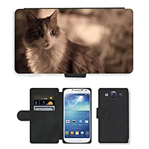 Super Stella Cell Phone Card Slot PU Leather Wallet Case // M00148173 Cat Animal Feline Pet Cats // Samsung Galaxy S3 S III SIII i9300