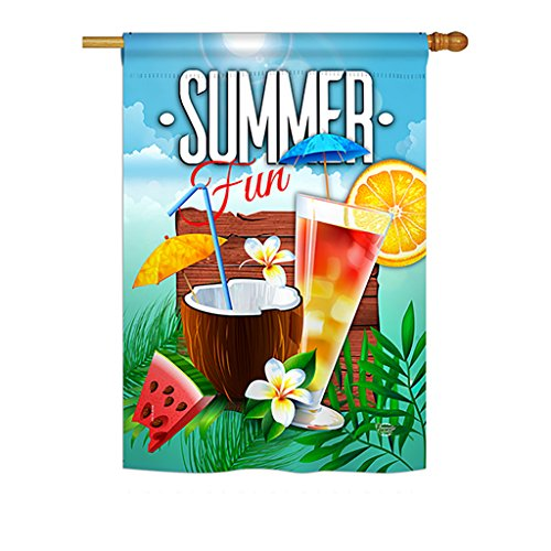Cool House Flag - Ornament Collection H192070 Cool Summer Drinks Happy Hour Beverages Decorative Vertical House Flag, 28